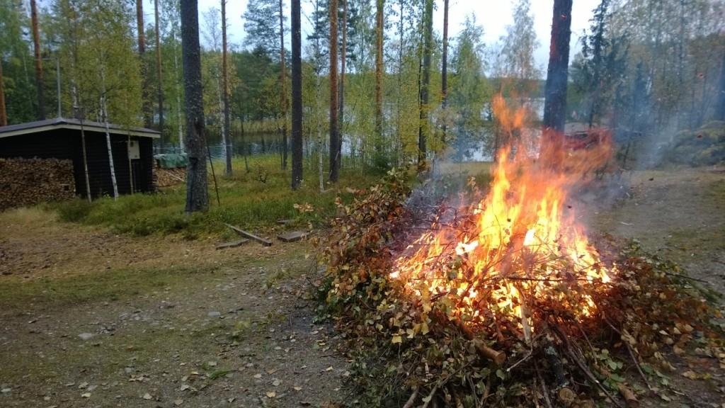 Oksat poltettiin myös pois, Nokia Lumia 920