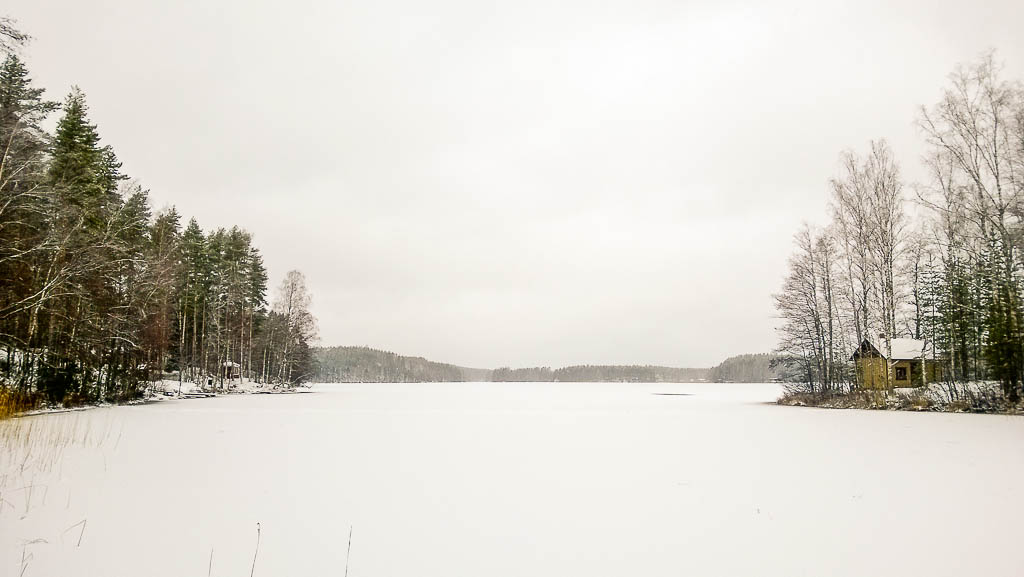 Talvinen Kuolimo