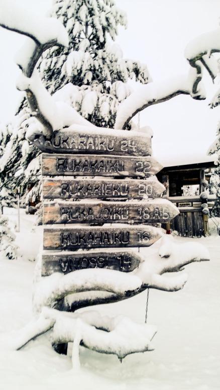 Winter, Nokia Lumia 1020