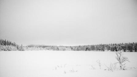 BW scenery, Nokia Lumia 1020